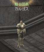 騎士団長カルゴス